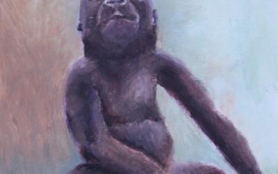 Baby Gorilla (2016)